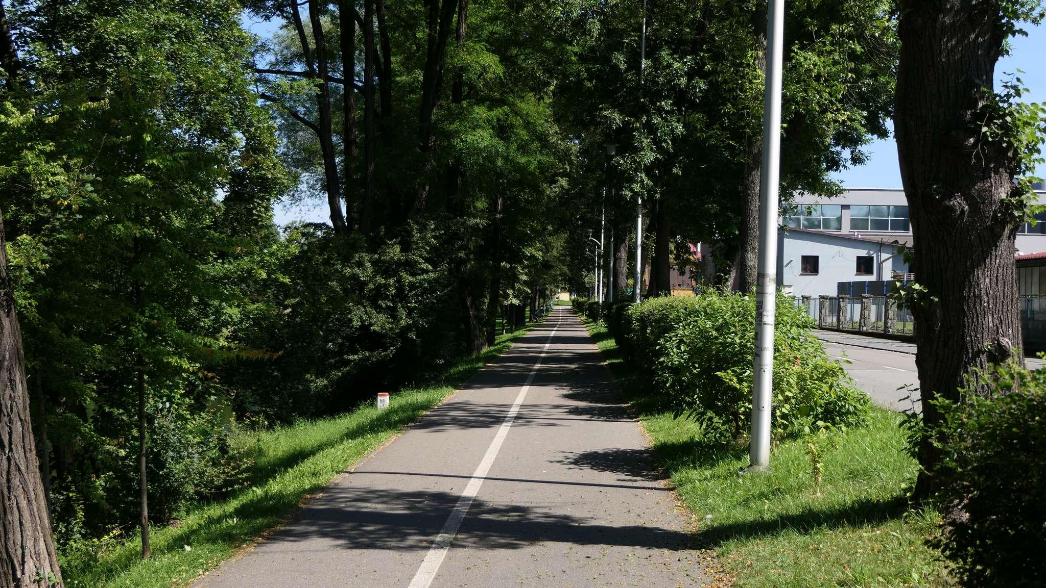 Ciąg pieszo-rowerowy przy al. Łyska