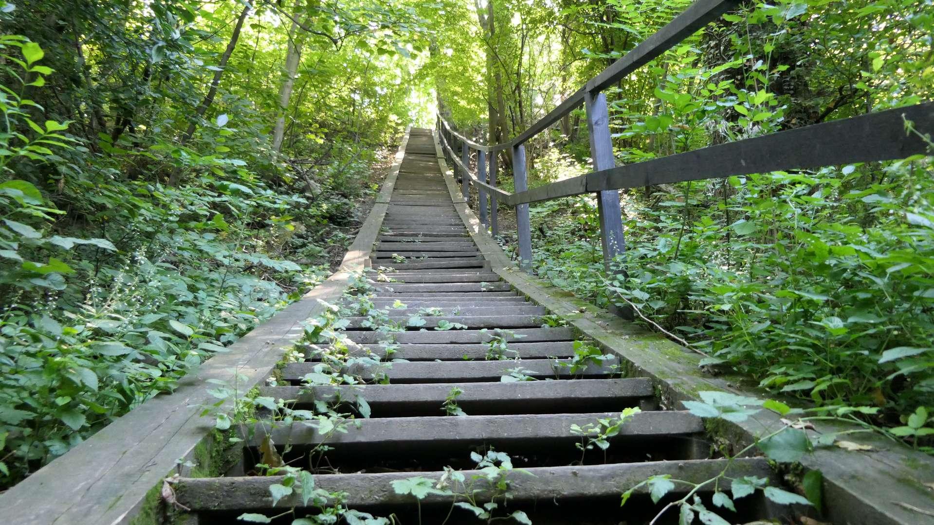Drewniane schody na końcu parkowych ścieżek, prowadzące na Wałkę.