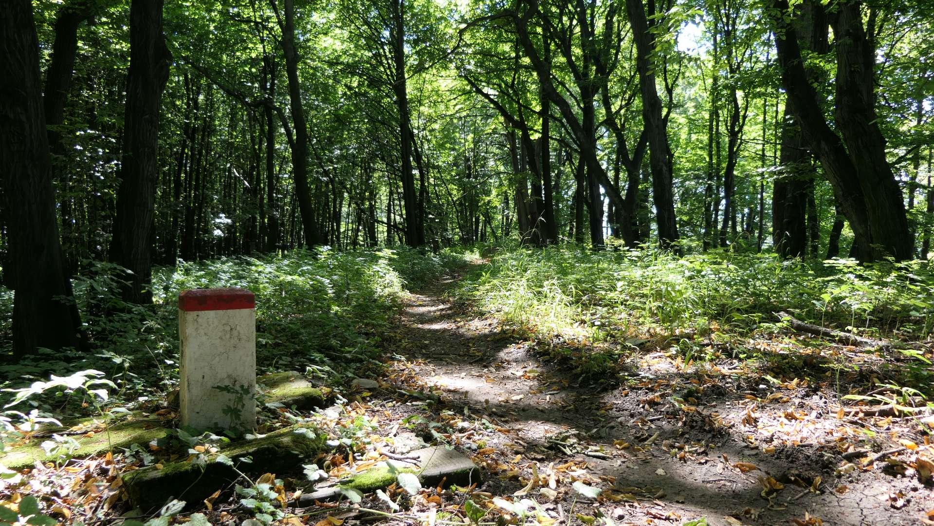Ścieżka wzdłuż rezerwatu Velké Doly.