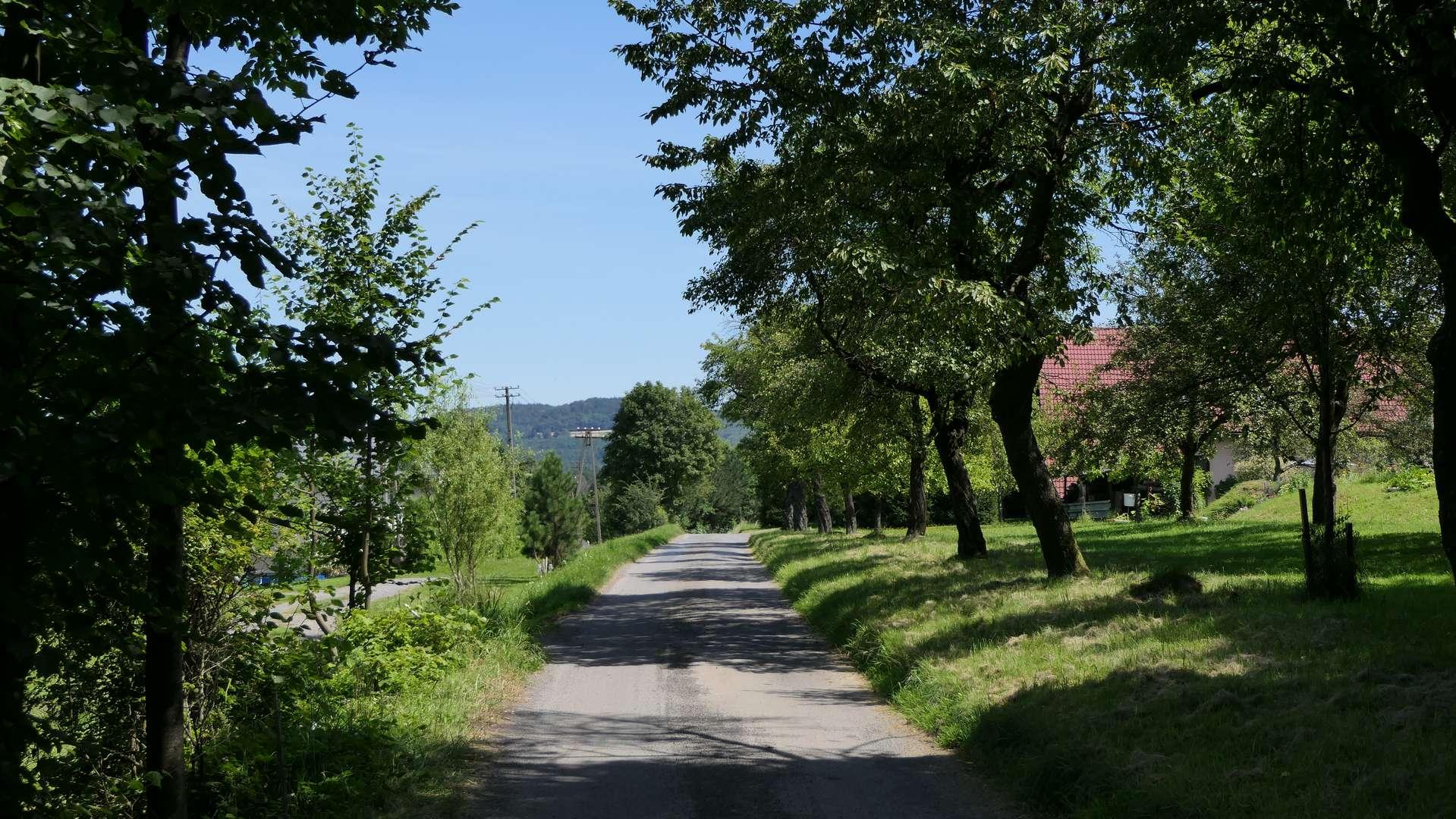 Droga graniczna w Kojkowicach