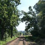 Widok na Czantorię w okolicach Lasu Strzelbin. Tuż obok torowiska płynie Bobrówka.