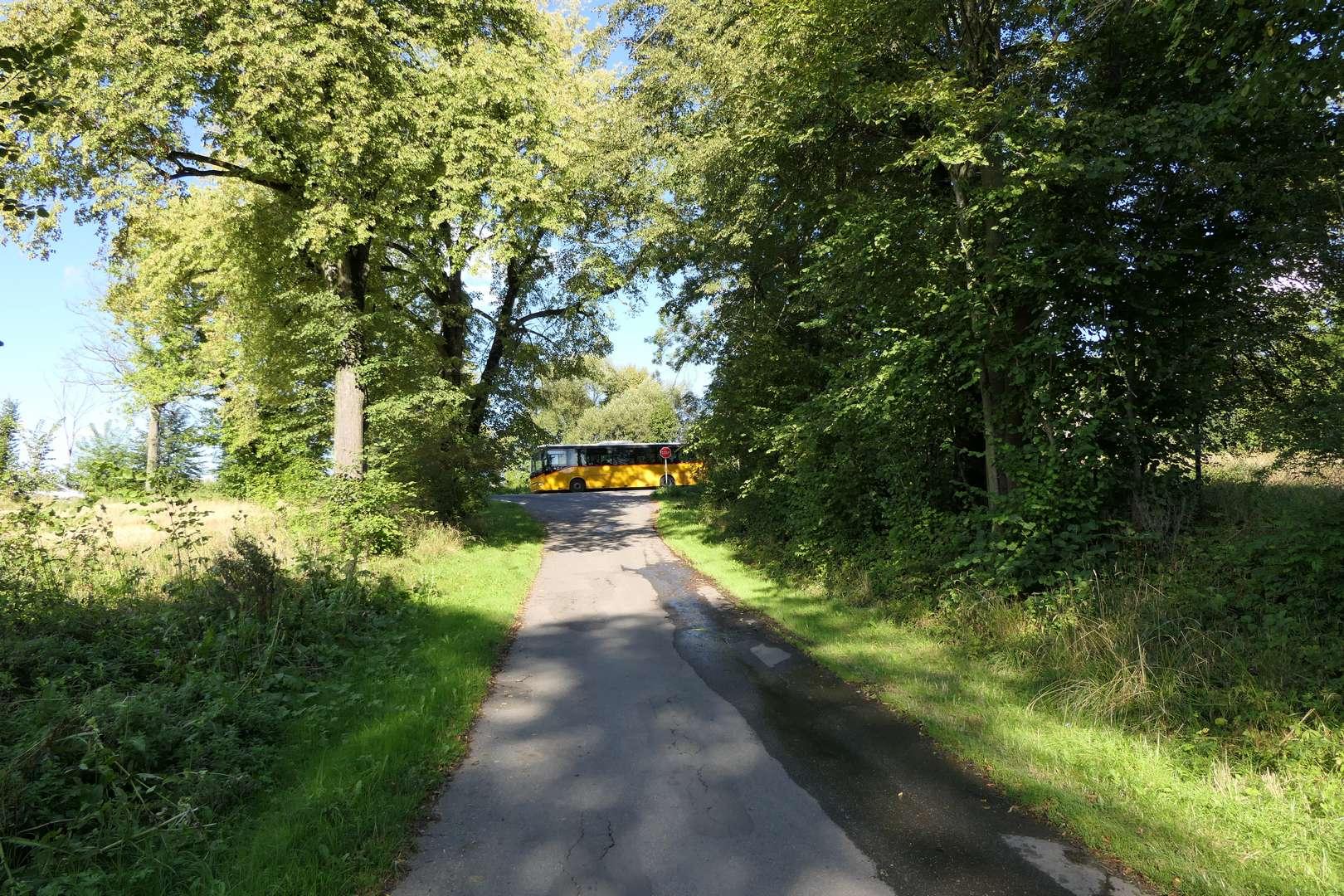 W tym wariancie trasy niestety czeka nas wyjazd na ruchliwą ul. Wiślańską.