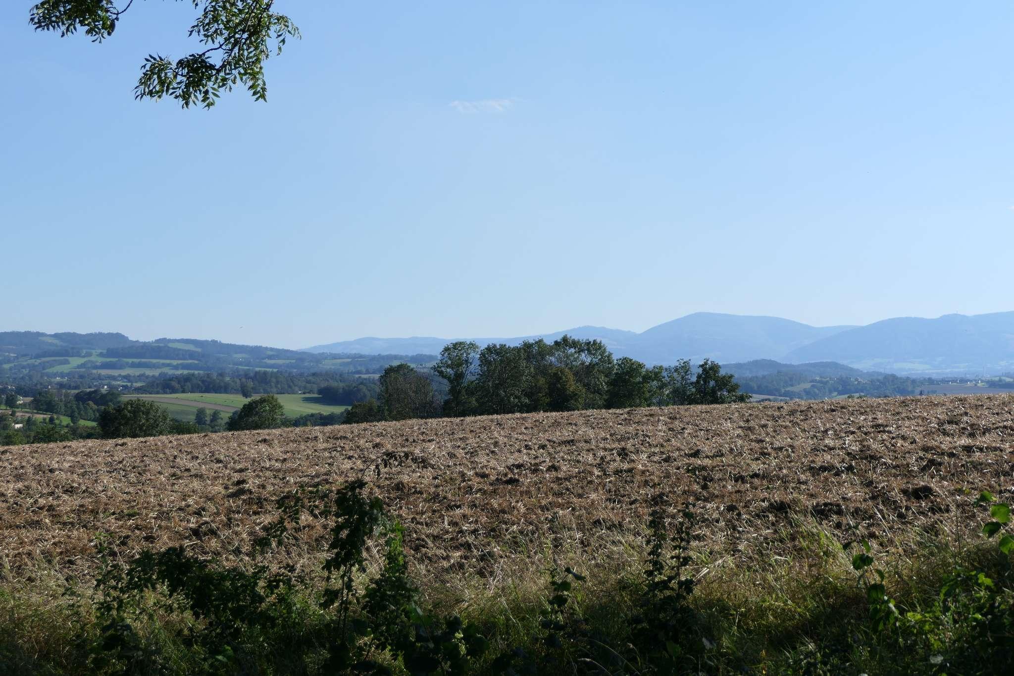 Okolice ul. Wichrowej to głównie pola uprawne, dzięki czemu wokół roztaczają się rozległe widoki.
