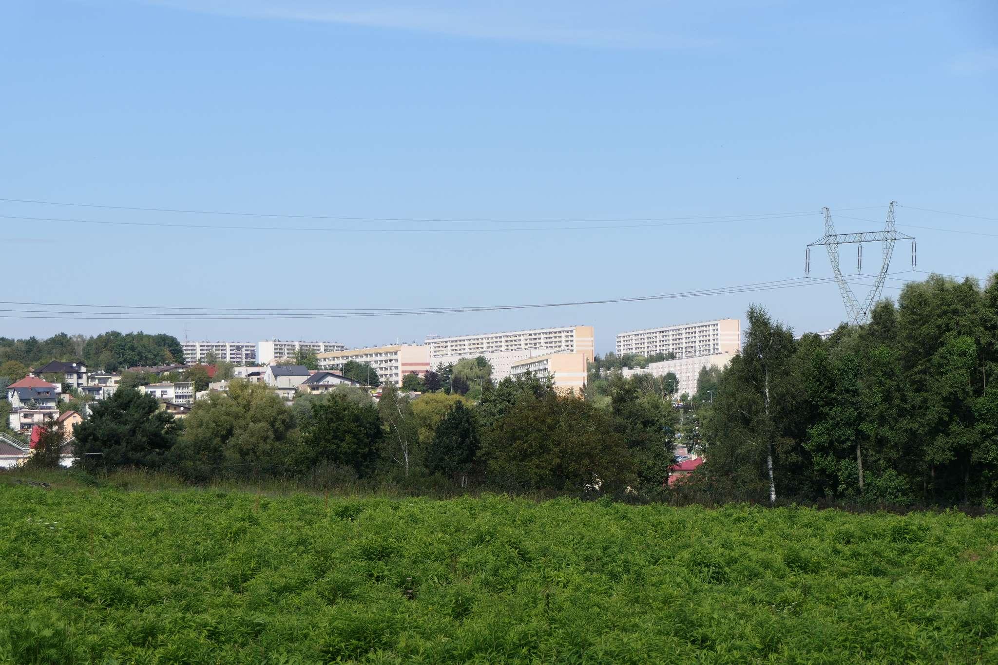 Widok z trasy na Jastrzębie Zdrój.
