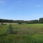 Im bliżej Godowa, tym więcej rolniczych terenów.