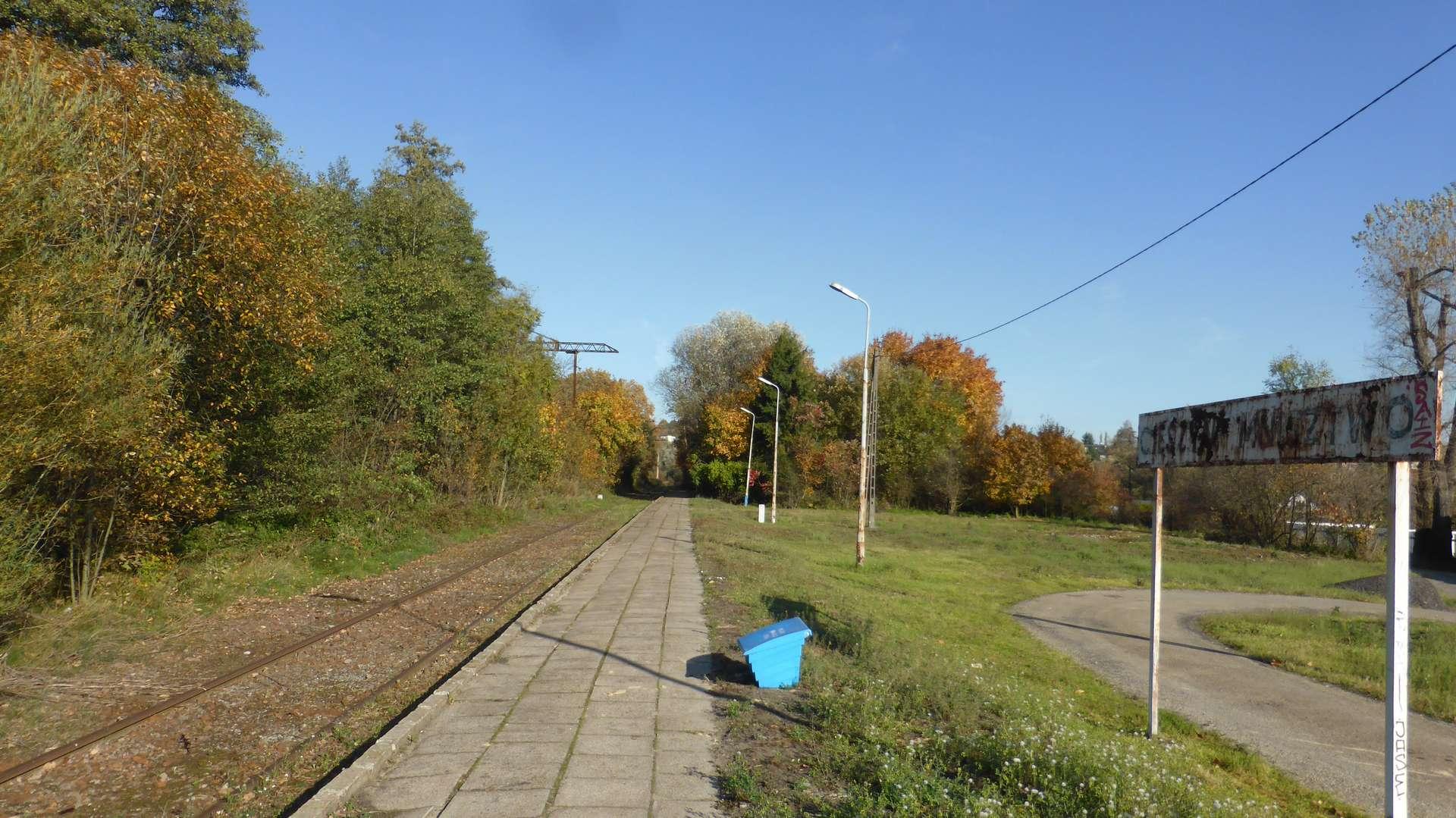 Stacja Cieszyn-Mnisztwo.