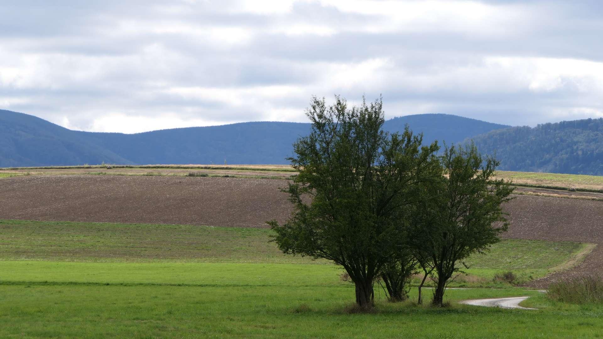 Rozległe widoki wokół WIelopola.