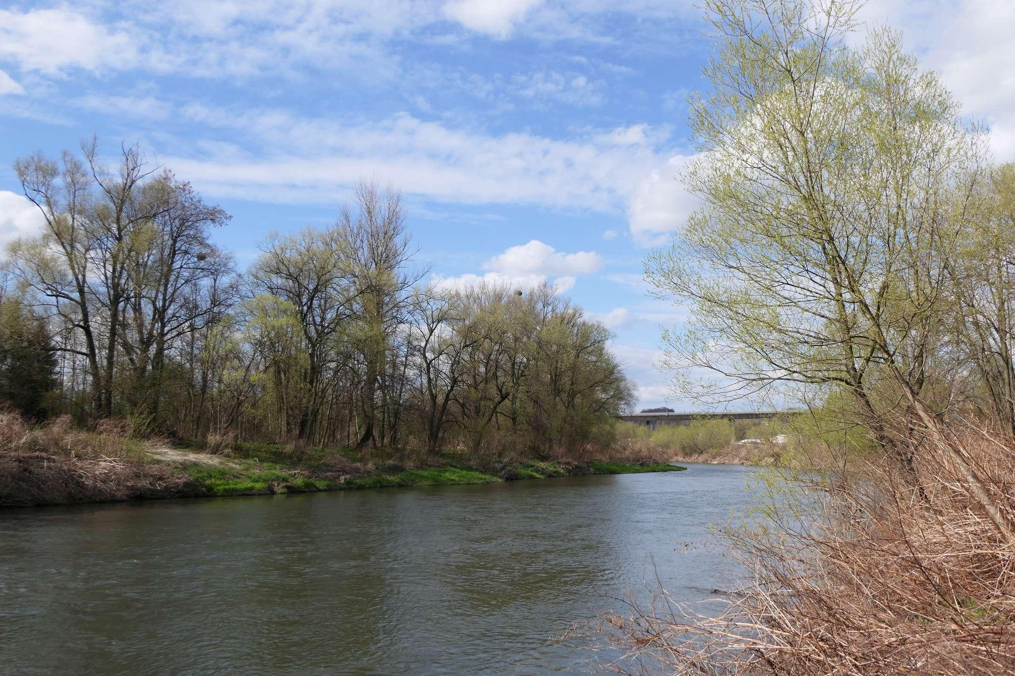 Im dalej od centrum, tym więcej zieleni również na czeskim brzegu Olzy. Nie trzeba się specjalnie wysilać, żeby wyobrazić sobie w tym miejscu przyjemny punkt wypoczynkowy.